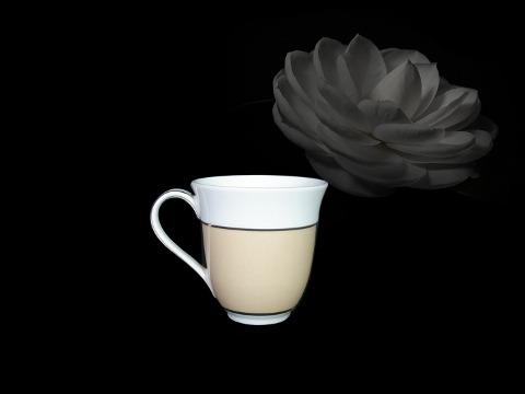 Ca sọc 0.4L Came Cafe sữa