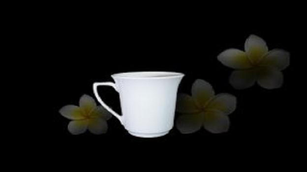 Ca Trà Minh Long 0.35 L Tulip Trắng